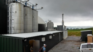 Synergy Dairy 1.4 MW digester