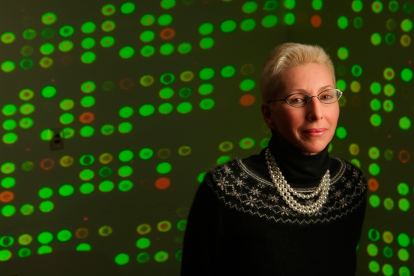 Norma Nowak, PhD, executive director of the University at Buffalo's New York State Center of Excellence in Bioinformatics and Life Sciences